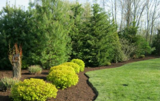 - Four Seasons Landscaping LI - Home